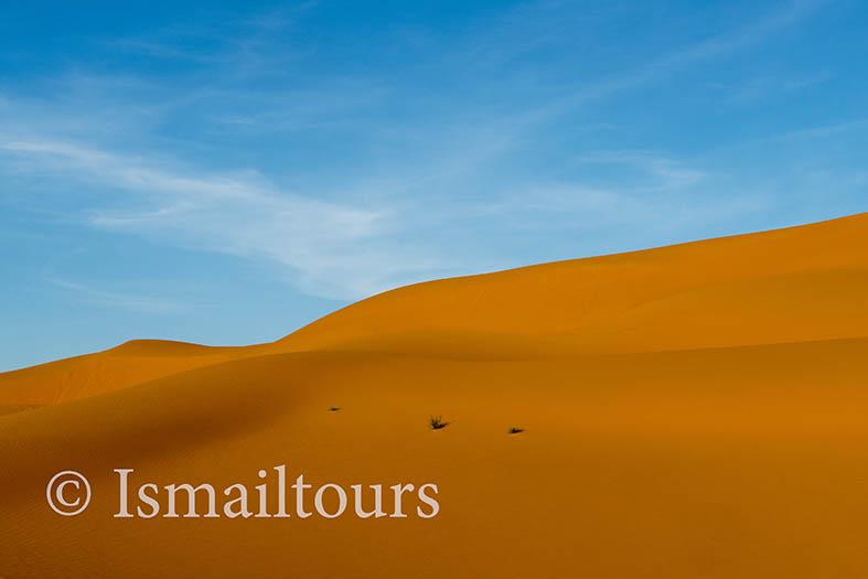 Marokko, Mhammid, 20150316.  Woestijn in de lente. Desert in springtime. Naamsvermelding verplicht; Foto ; Sabine Joosten/Hollandse Hoogte