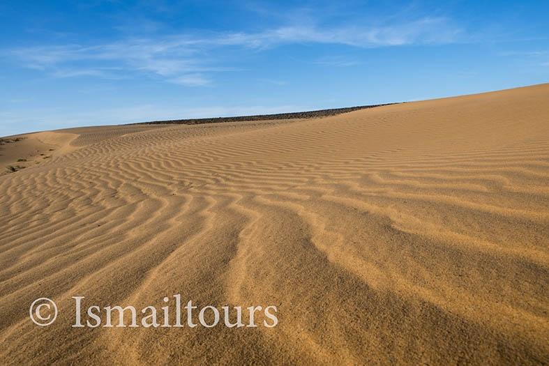 Marokko, Merzouga, 20150316.  Woestijn in de lente.Zand structuren, details. Sand structures. Desert in springtime. Naamsvermelding verplicht; Foto ; Sabine Joosten/Hollandse Hoogte